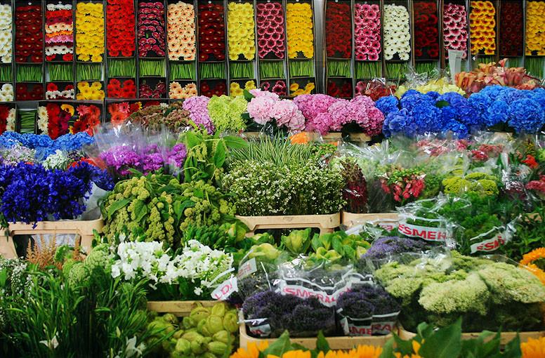 Цветы опт рижский рынок москва
