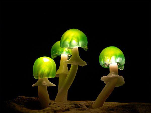 58099_Mushroom-Lamps_4-l