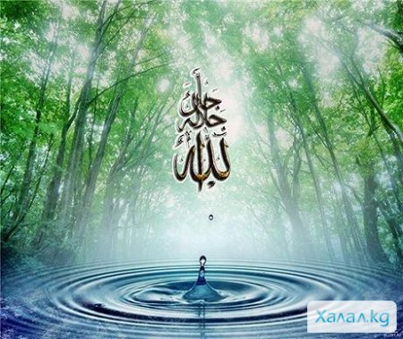 Имени аллаха картинки с природой
