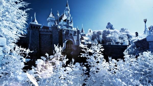 000-замок-спящ-красавицы