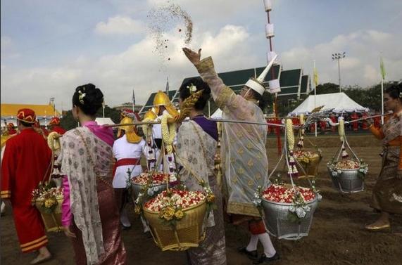 sacred oxen predict good harvest-04