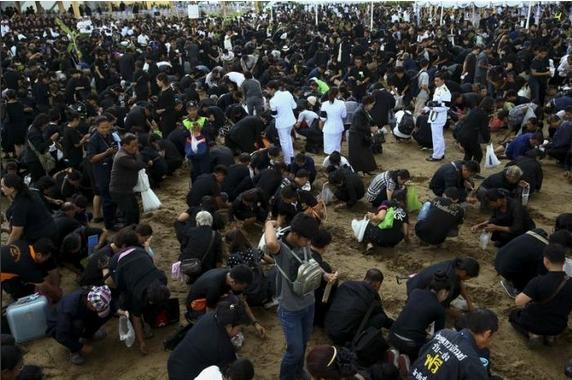 sacred oxen predict good harvest-02
