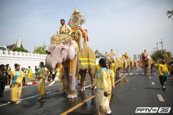 слоны-01