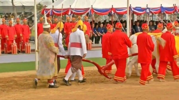 Ploughing Ceremony-06