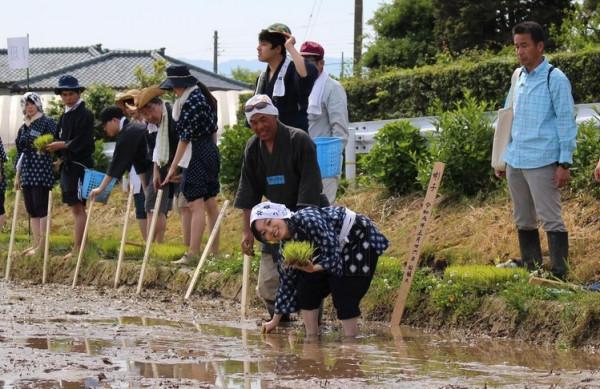 2019-05-26_ниигата-рис