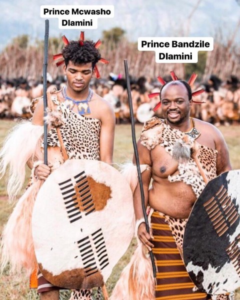 принцы-09-бандзиле
