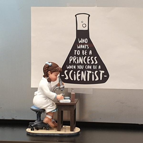 саяко-принцесса-ученый