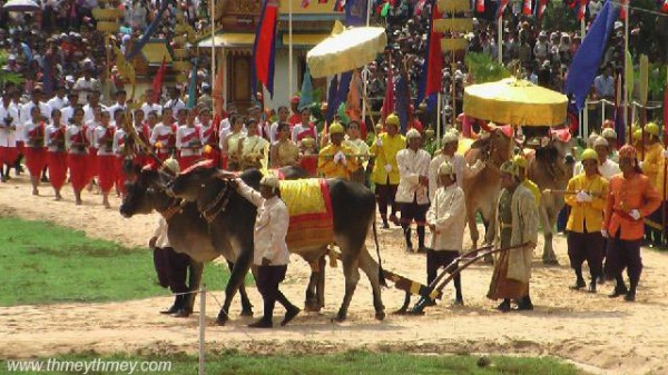 Royal Ploughing Ceremony in Cambodia
