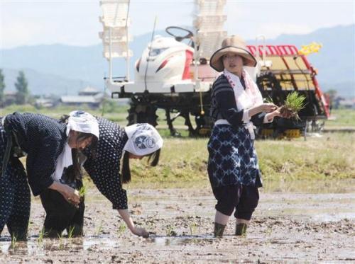 2018-05-20_rice-planting_Niigata Prefecture