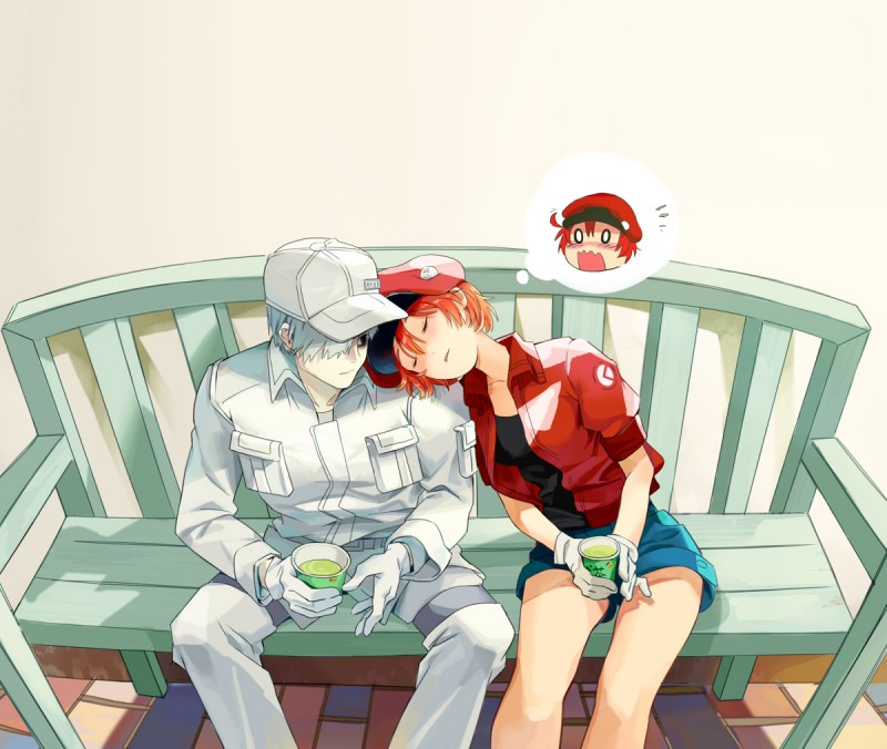 __ae_3803_red_blood_cell_u_1146_and_white_blood_cell_hataraku_saibou_drawn_by_touming_mao__217518d7b903f8959e4f2eb2a7b59975