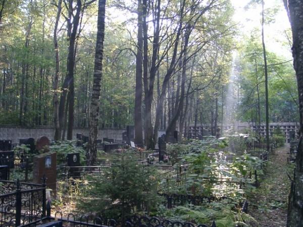 троекуровское кладбище-2