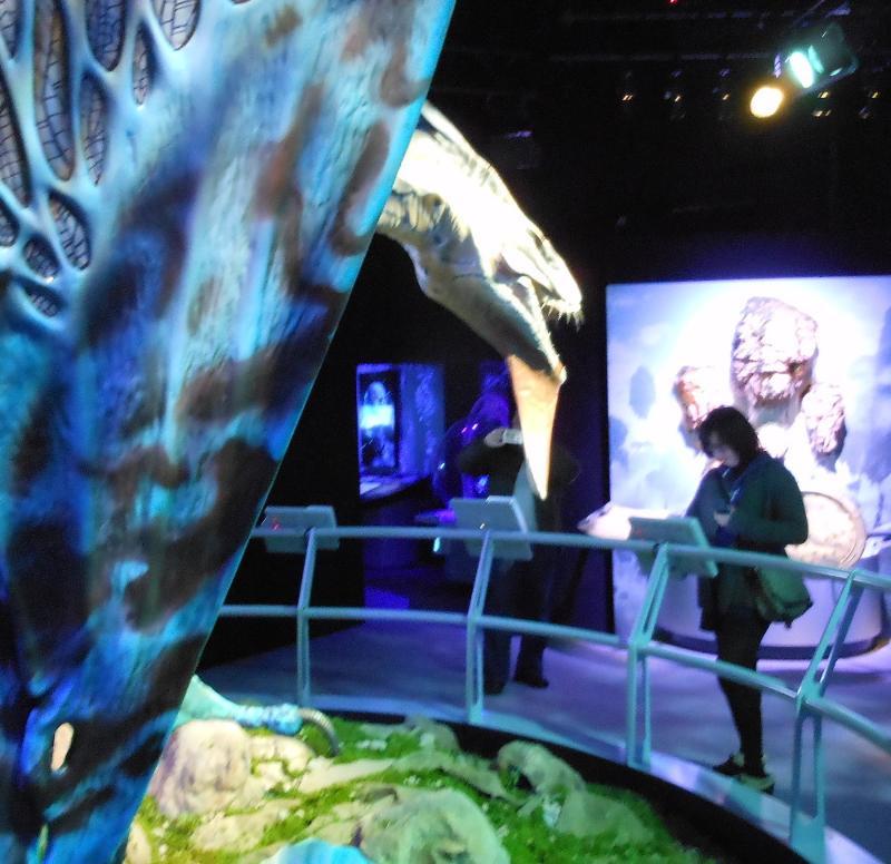 Avatar Hammerhead: [Review] AVATAR: Discover Pandora