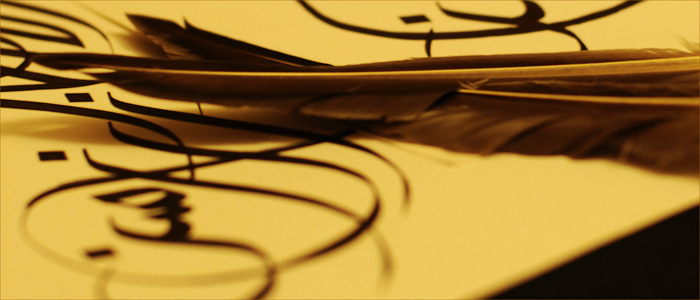 feathers_inet