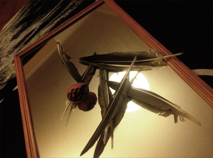 mirror_bird