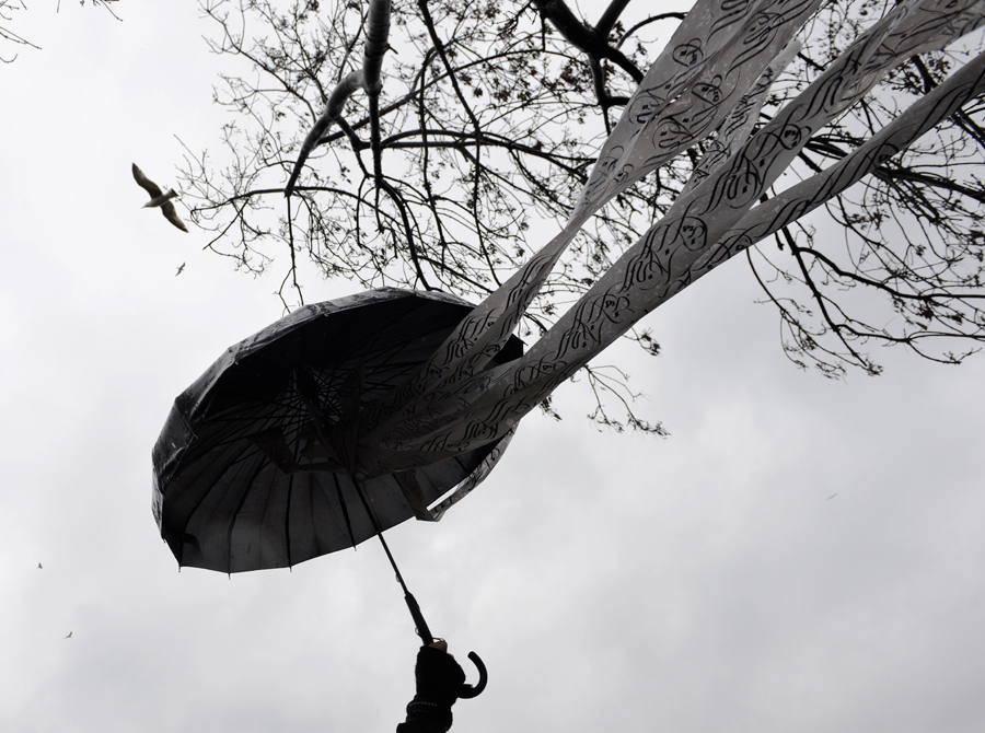 birdsumbrella_inet
