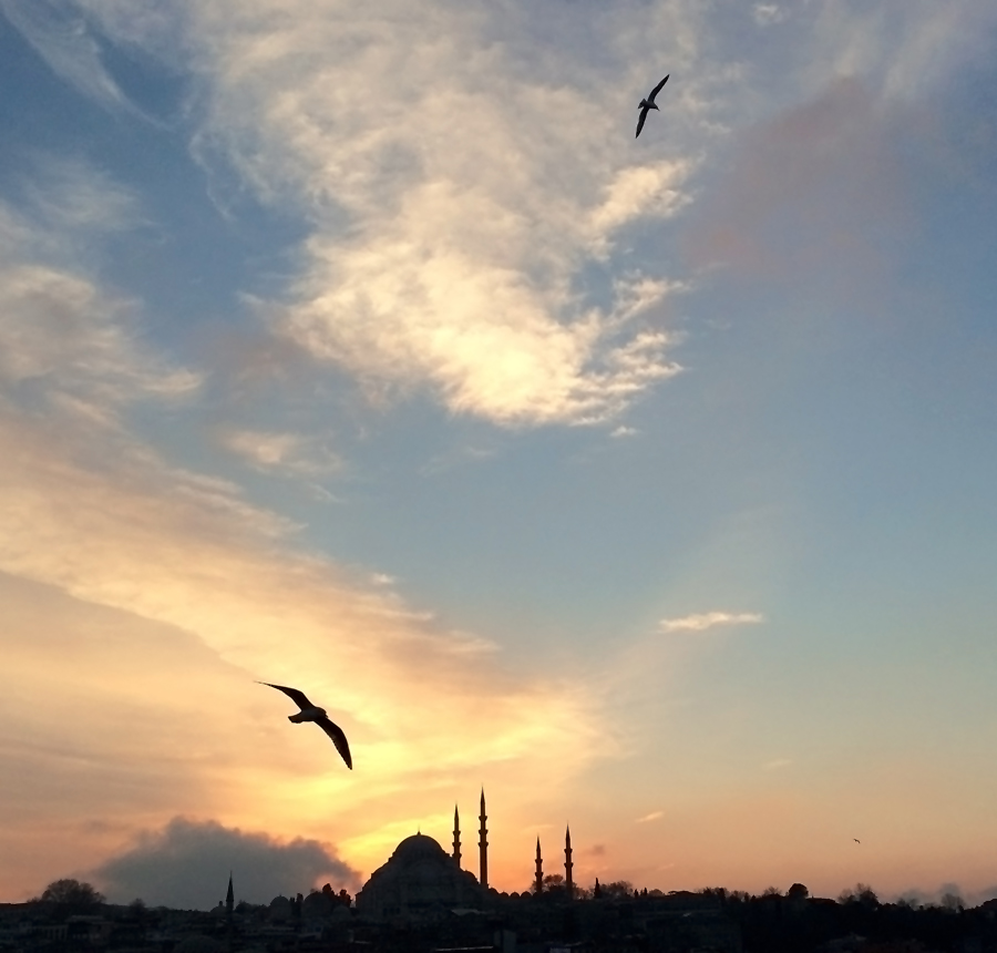 Istanbulbirdseyes1_inet