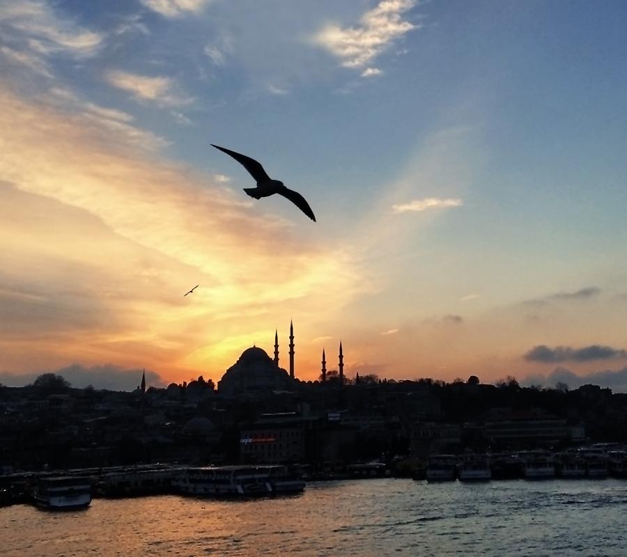 Istanbulbirdseyes2_inet