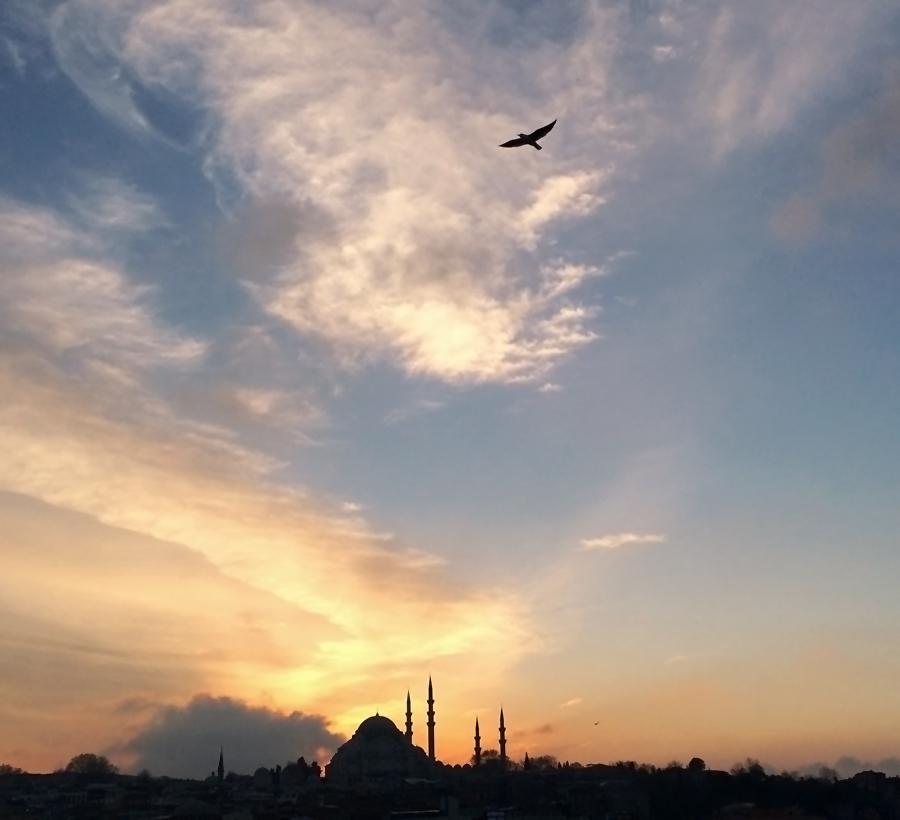 Istanbulbirdseyes3_inet