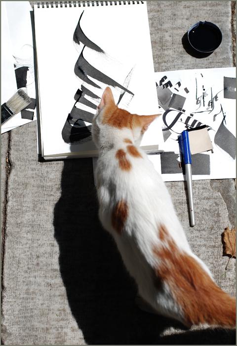 calligraphic_cat