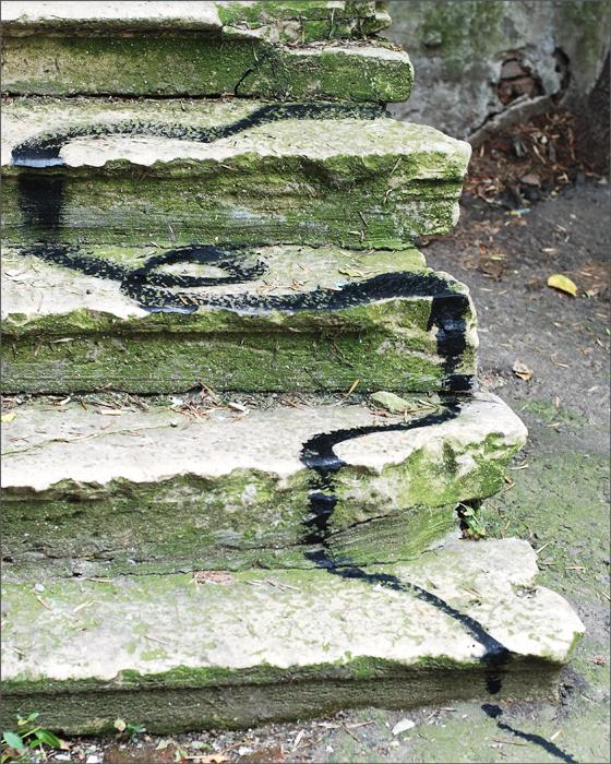 steps_inet