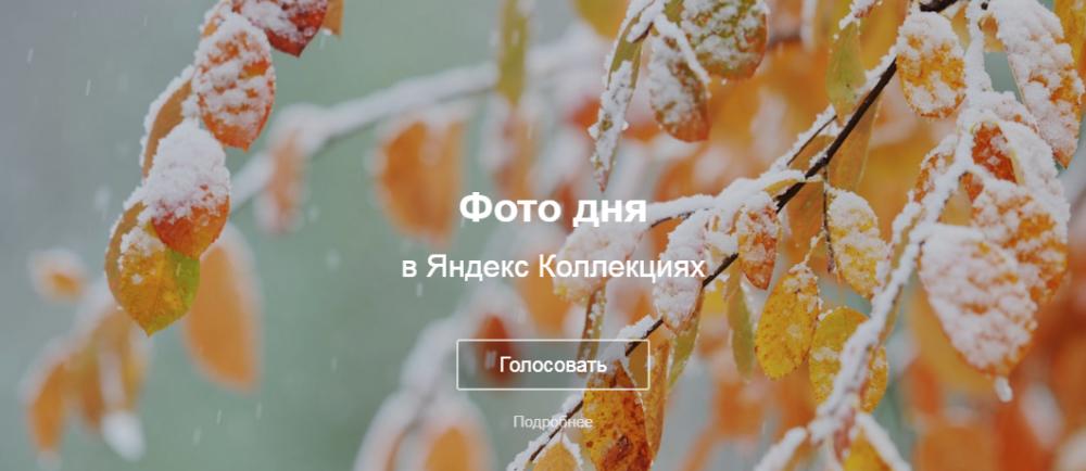 Яндекс Фотки закрывают. И где теперь хранить фотки для постов?
