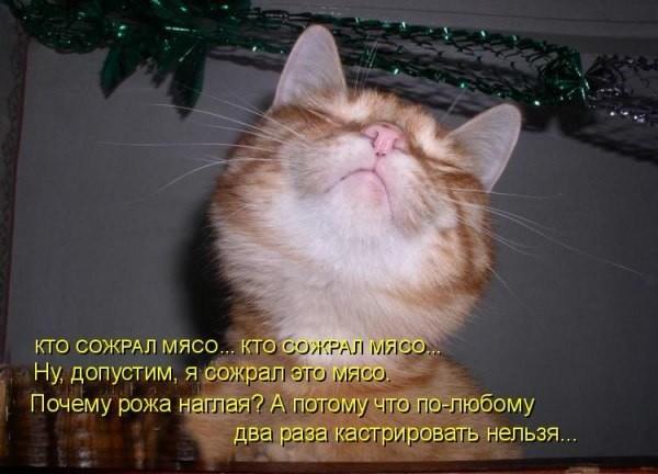http://ic.pics.livejournal.com/universal_inf/69349960/2713439/2713439_original.jpg
