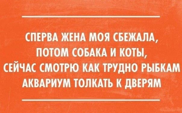 юм 11