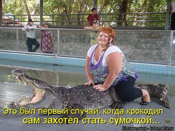 kotomatritsa_2a