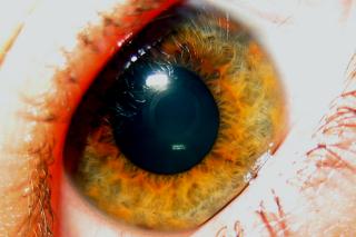 Naomi's Eye