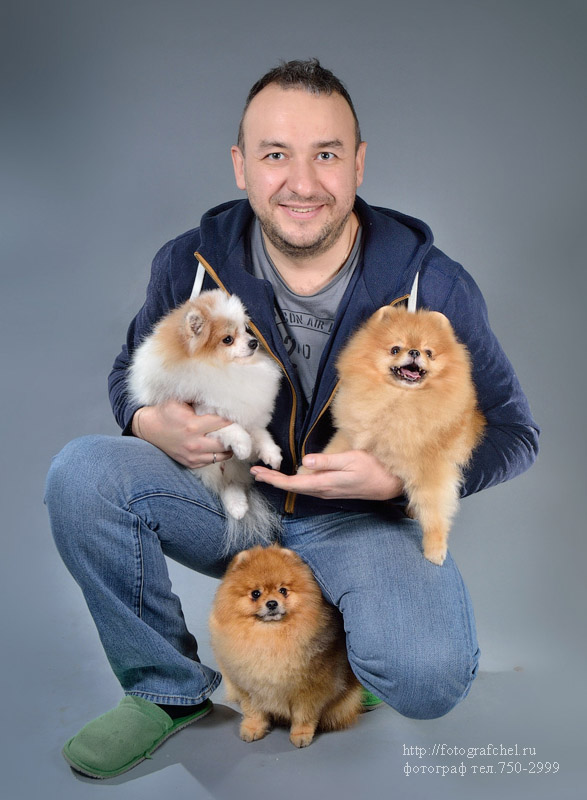 фотосъёмка животных Челябинск, фотограф анималист Челябинск, собаки фото Челябинск