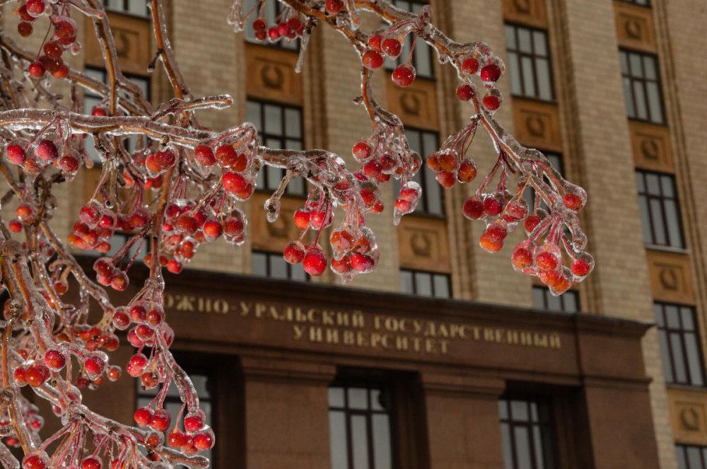 ЮУРГУ фото - фотограф Челябинск