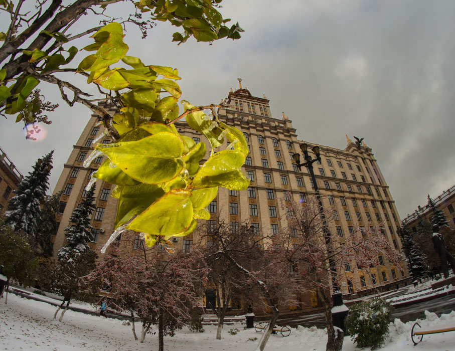 фотограф Челябинск ЮУРГУ