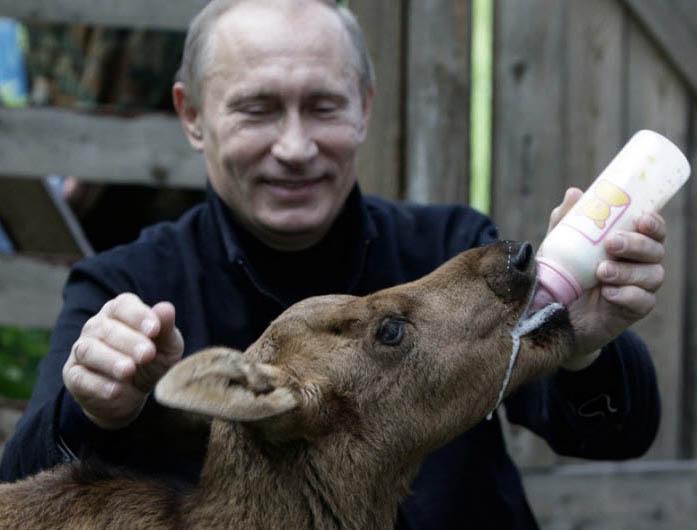 Путин кормит молочком