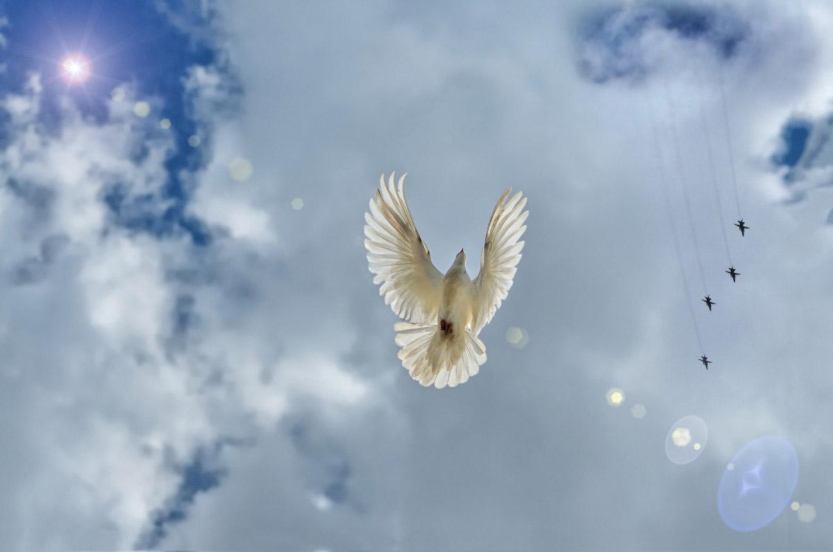 запуск белых голубей свадебный фотограф Челябинск