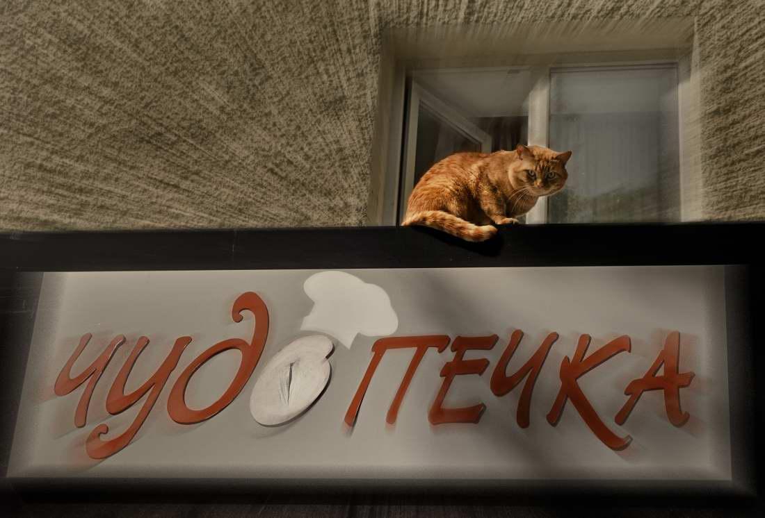 фуд фотограф - выпечка в Екатеринбурге - пекарня Чудо-Печка 9756