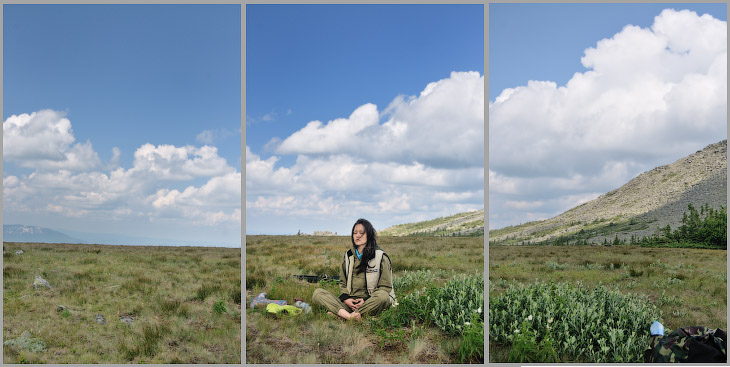 Хребёт Нургуш горная тундра полярная ива цветы альпийской гречихи
