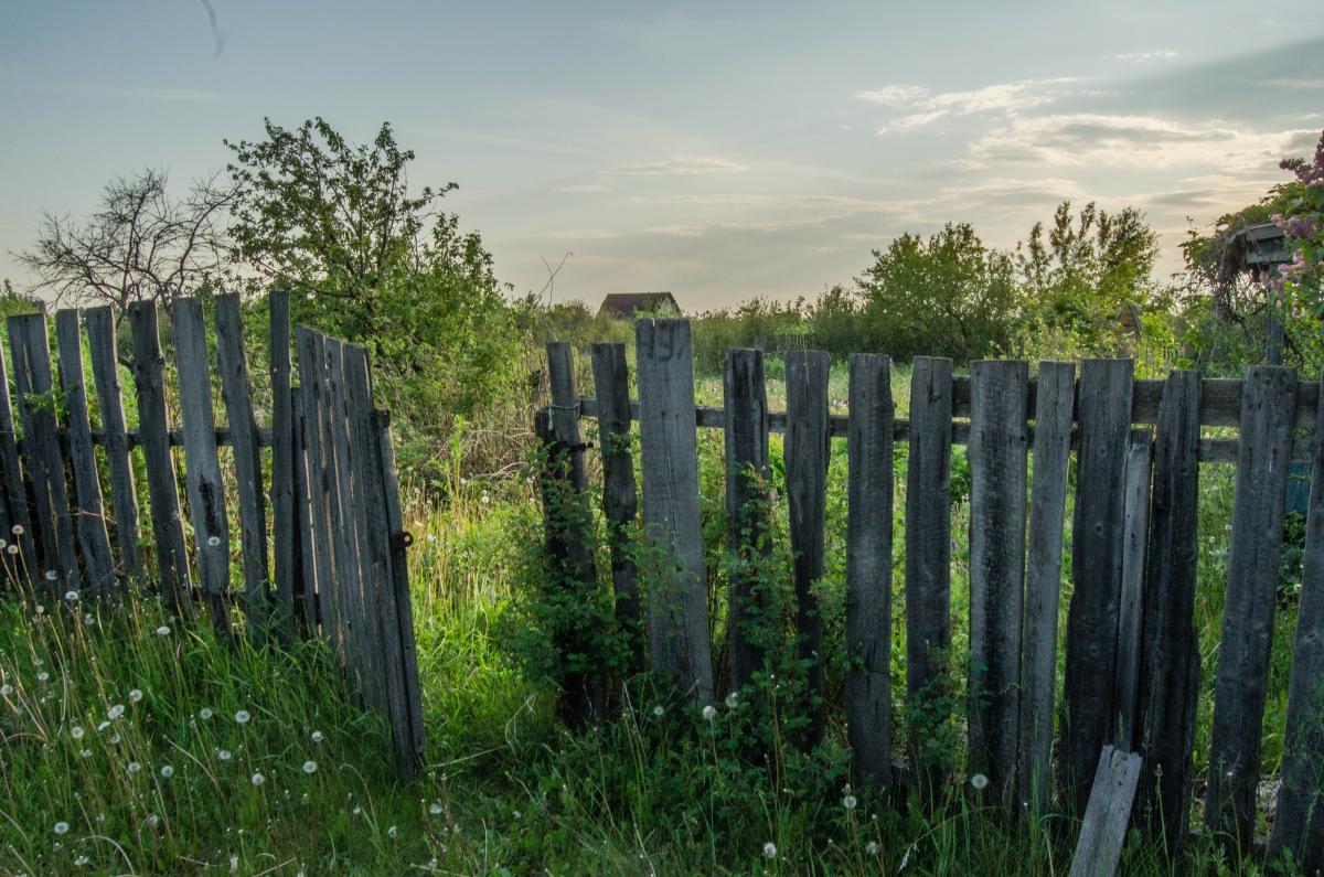 Картина найдена в заброшенном садовом домике - фотограф Челябинск5262