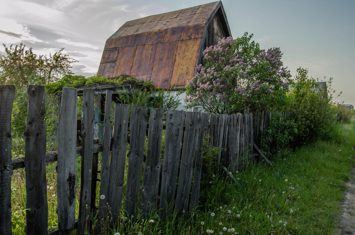 Картина найдена в заброшенном садовом домике - фотограф Челябинск5263
