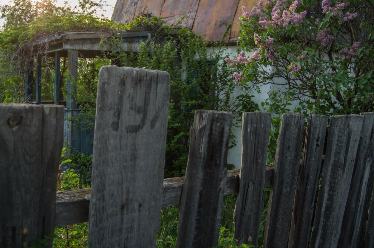 Картина найдена в заброшенном садовом домике - фотограф Челябинск5264