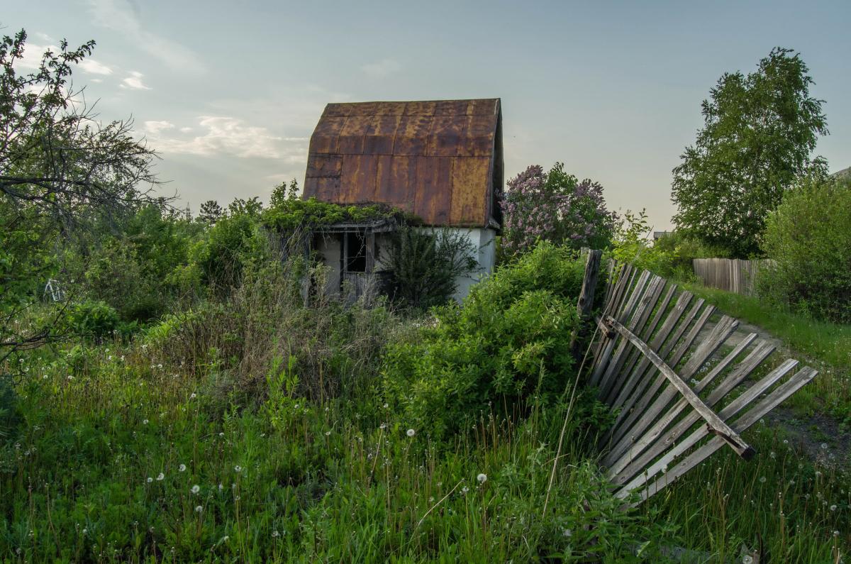 Картина найдена в заброшенном садовом домике - фотограф Челябинск5267