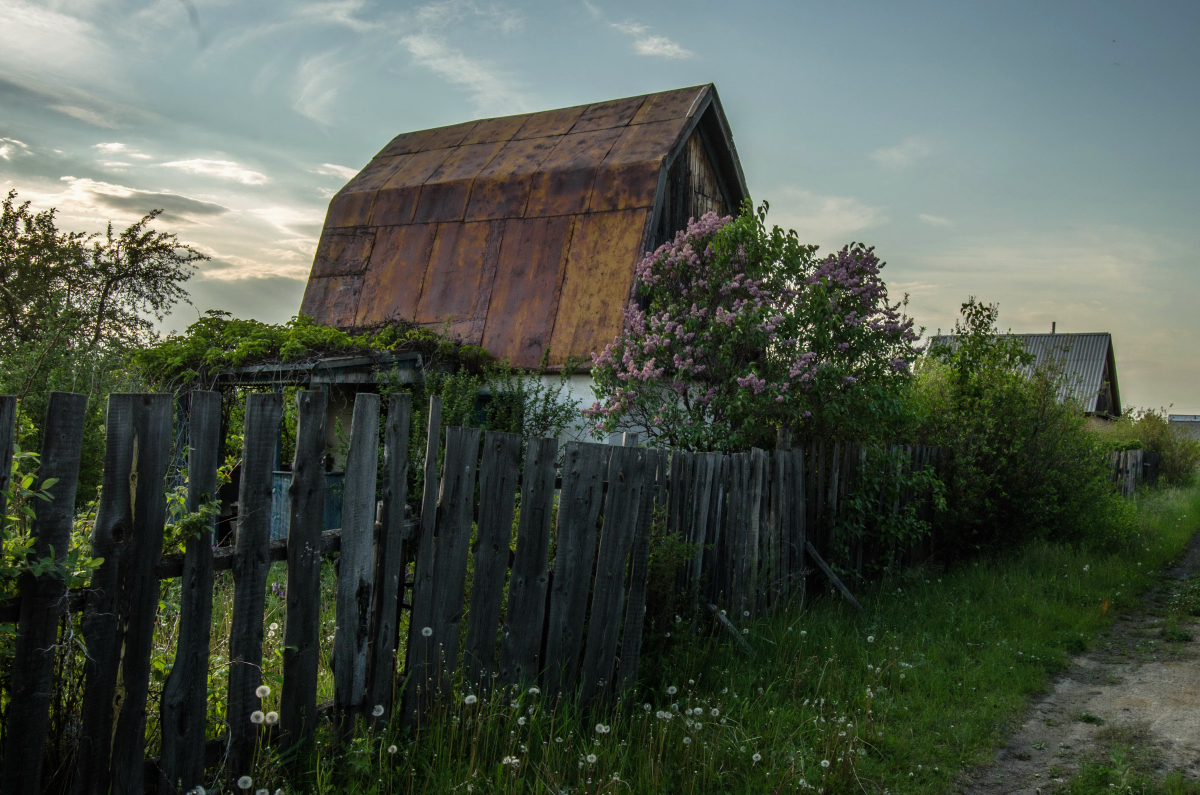 Картина найдена в заброшенном садовом домике - фотограф Челябинск5269