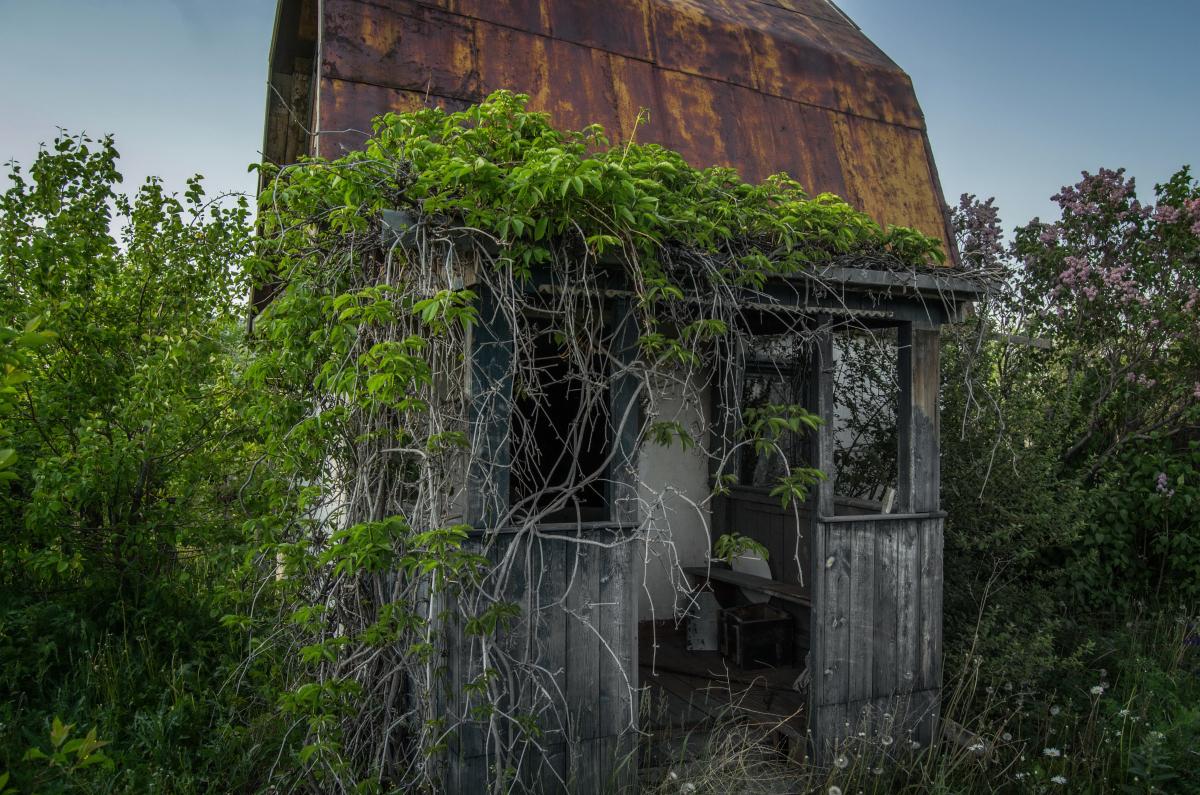 Картина найдена в заброшенном садовом домике - фотограф Челябинск5270