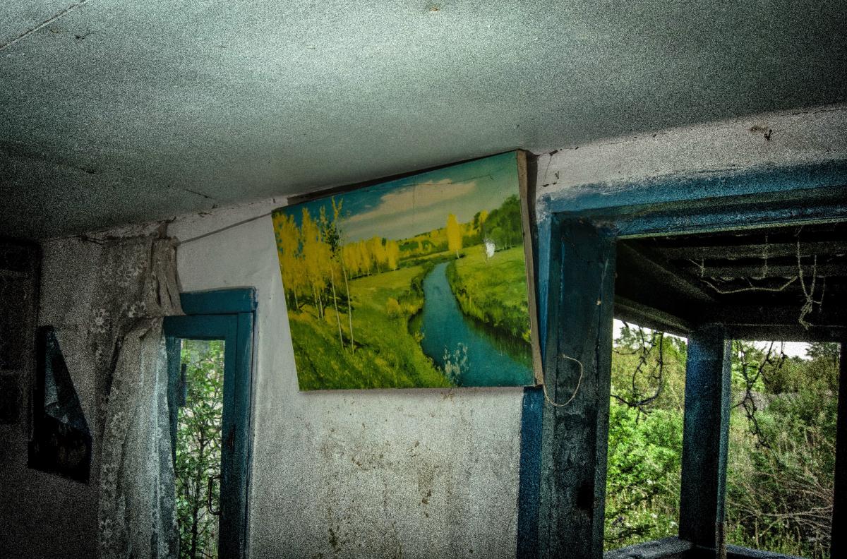 Картина найдена в заброшенном садовом домике - фотограф Челябинск5281