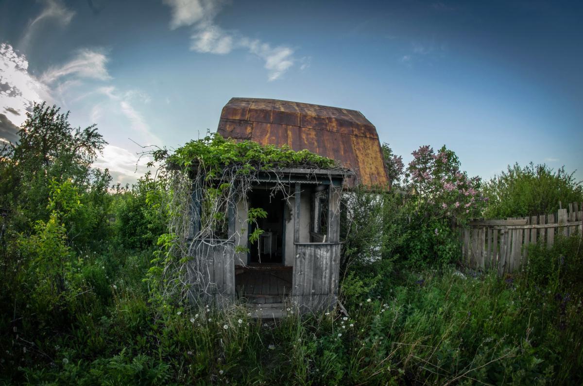 Картина найдена в заброшенном садовом домике - фотограф Челябинск5284