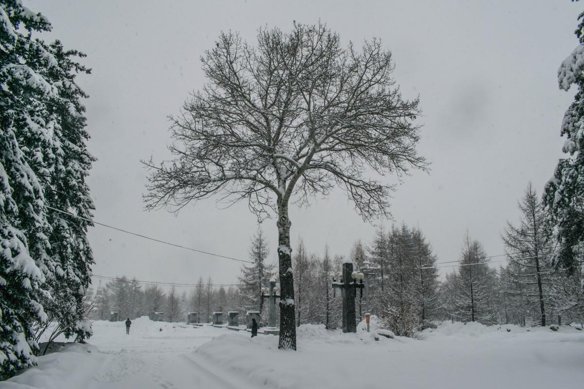 фотограф Челябинск  _2325