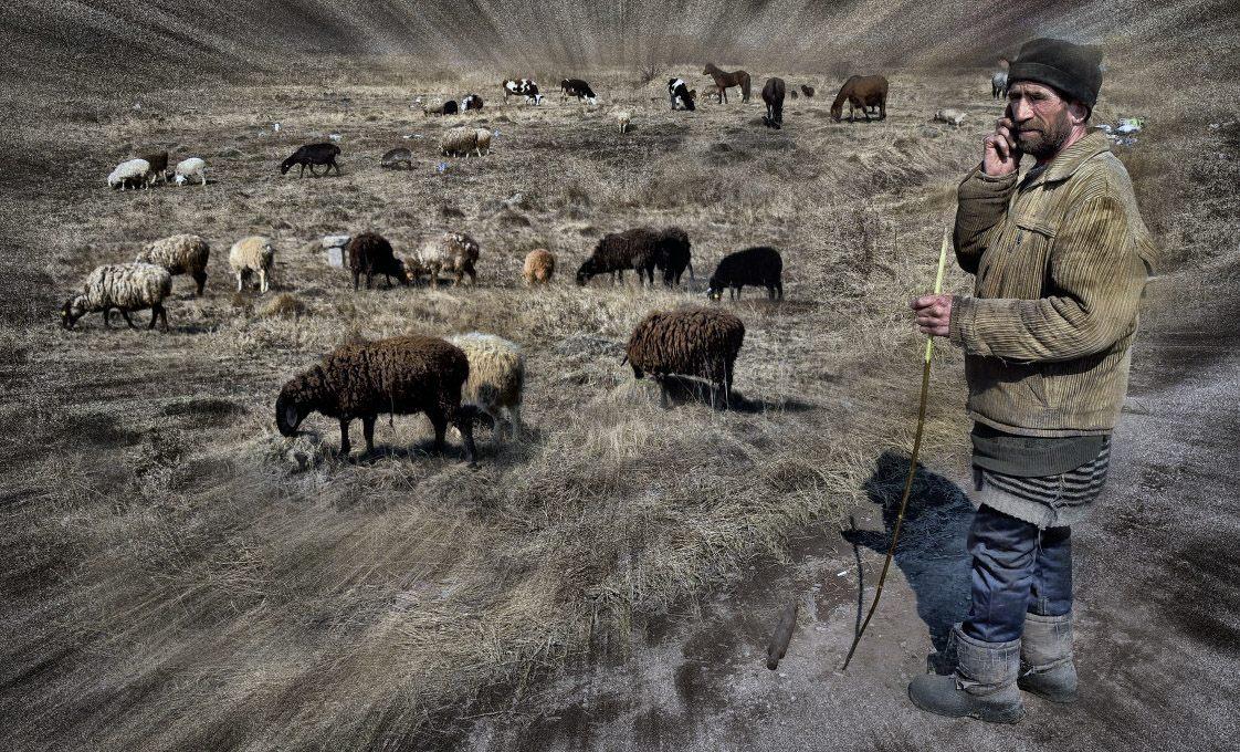 стадо, пастух, бараны - фотограф Челябинск
