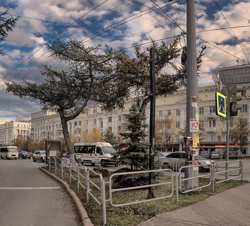 даурские лиственницы Челябинск памятник неизвестному солдату империи