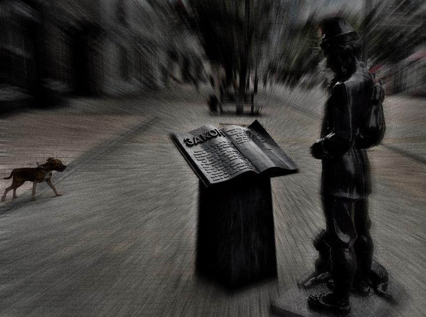 фотограф Челябинск - законодательная власть