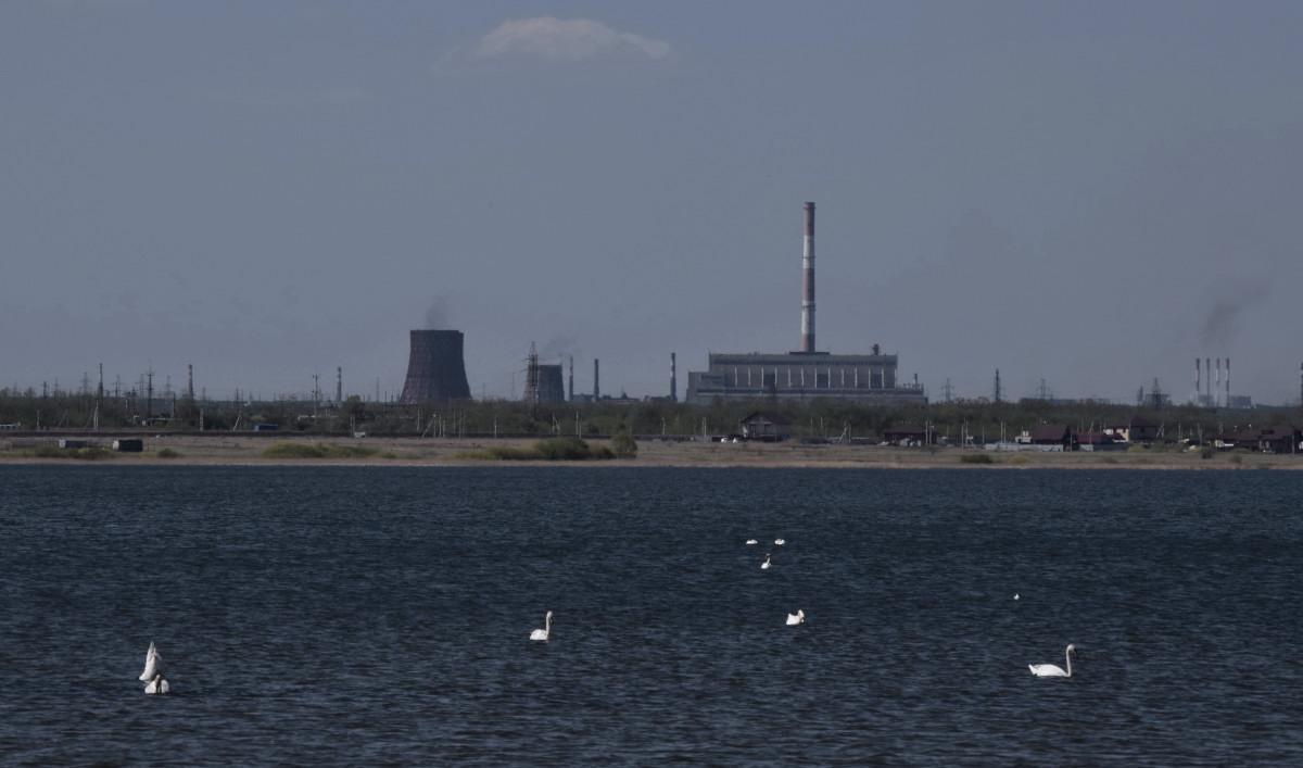 Озеро Петровское, Челябинск, Лебеди