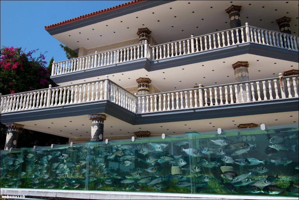 aquarium-fence-001